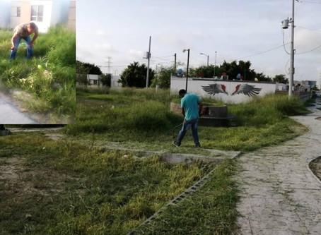 "Brigada ""Amo Mi Plaza"""