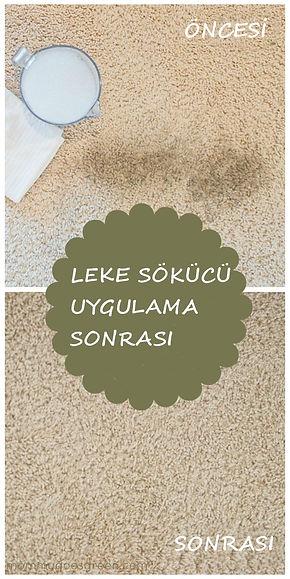 homemade-carpet-cleaner-21K.jpg