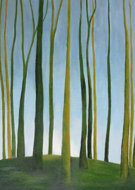 arbres3.jpg