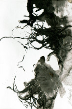 racines05.jpg