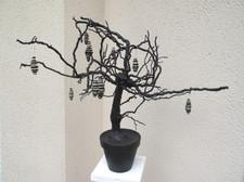 racines+noir.jpg