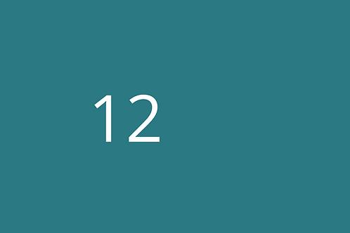 12 - Hazardous Substances