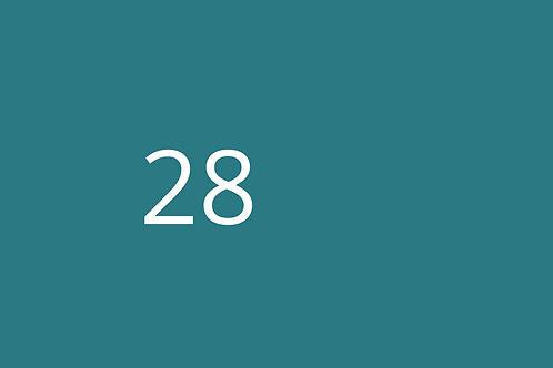 28 - Scaffolding