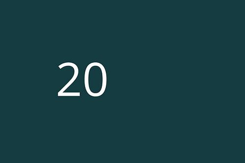 20 - System Improvement Form