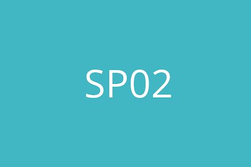 SP02 - Consultation