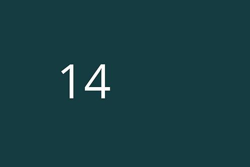 14 - JSEA Hazard checklist