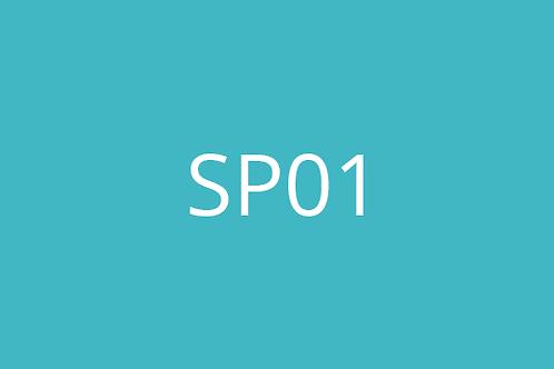SP01 - Calibration of Measuring Equipment