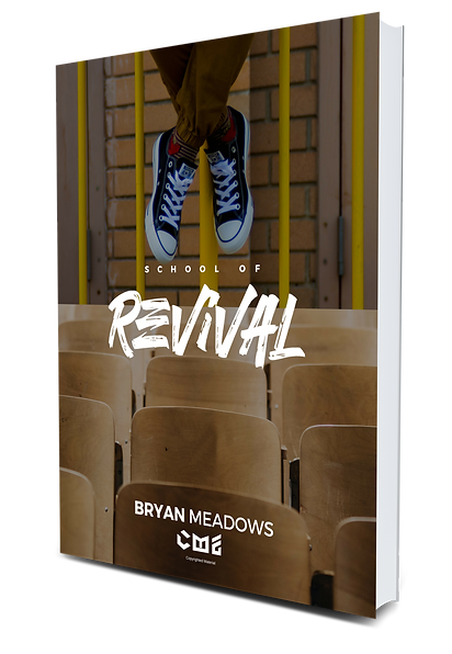 Bryan MEadows School of Revival 3D book