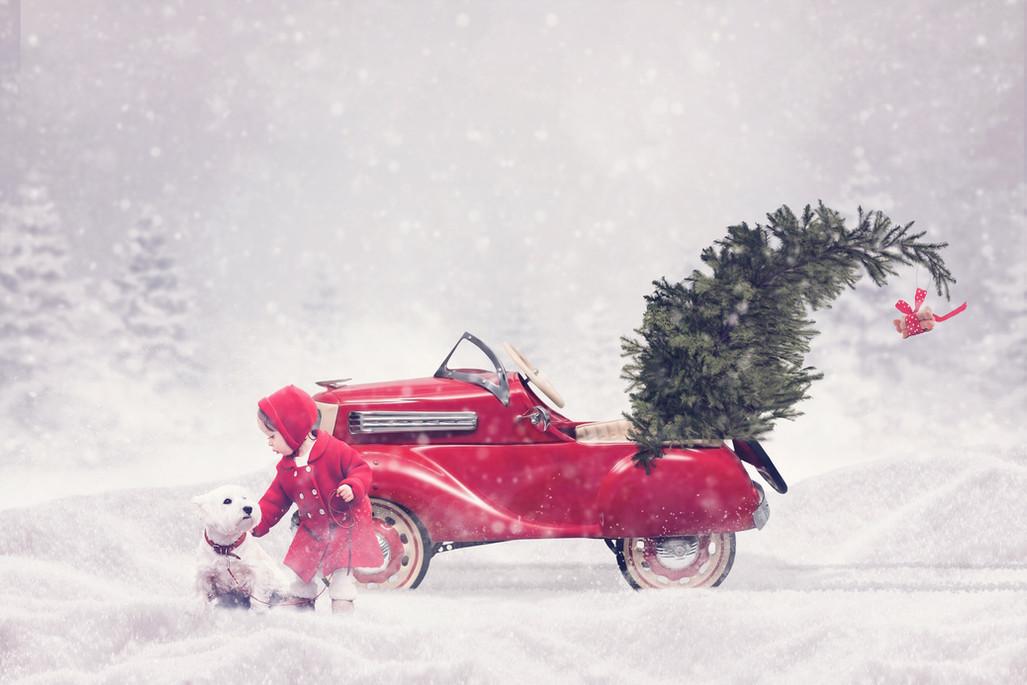 Christmas Red Car.jpg