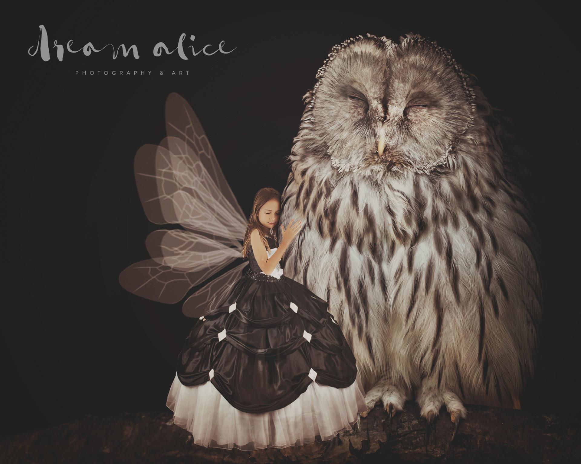 Owl Love. Creative Children's Photography fantasy photoshoot, Dream Alice Photography & Art, Gold Coast