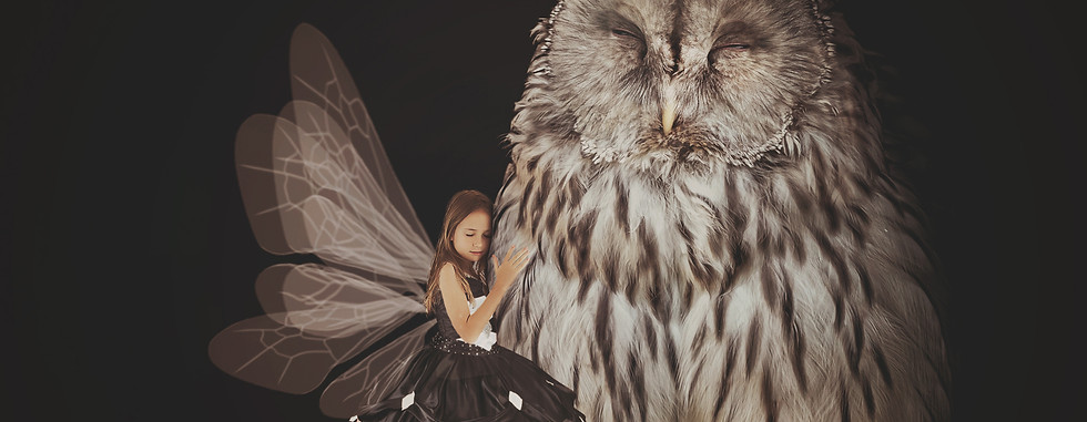 Owl Love. Creative Children's Photography fantasy photoshoot, Dream Alice Photography & Art, Gold Coast