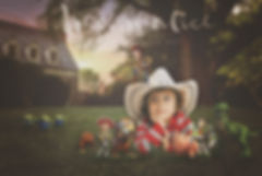 dream alice toy story photography and art.