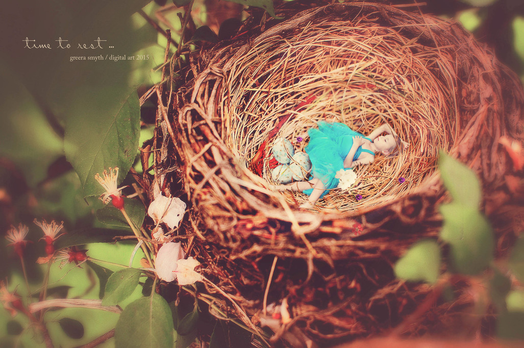 Ava Nest 1.jpg