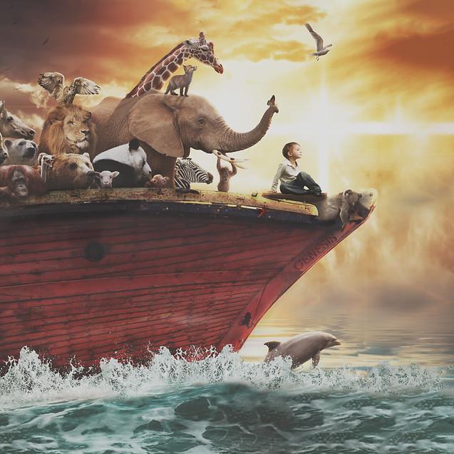 Noahs Ark. Creative Children's Photography fantasy photoshoot, Dream Alice Photography & Art, Gold Coast