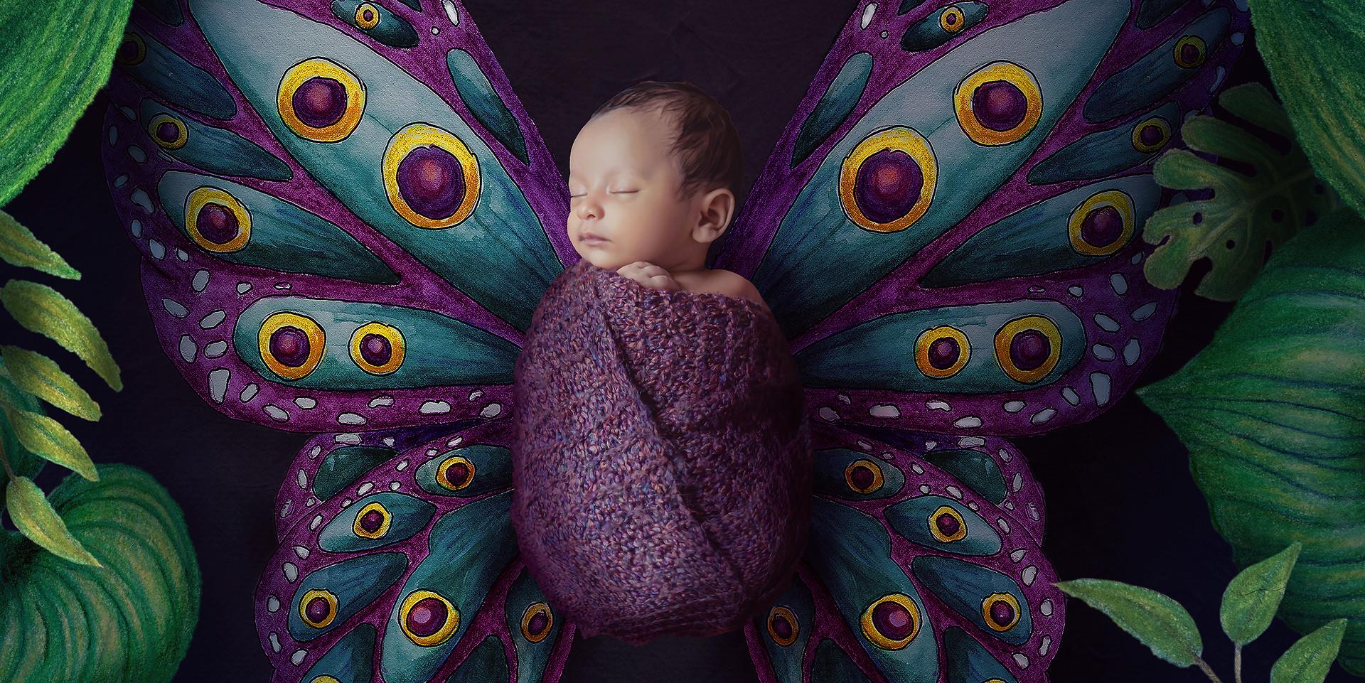 Baby Butterfly WM Sml.jpg