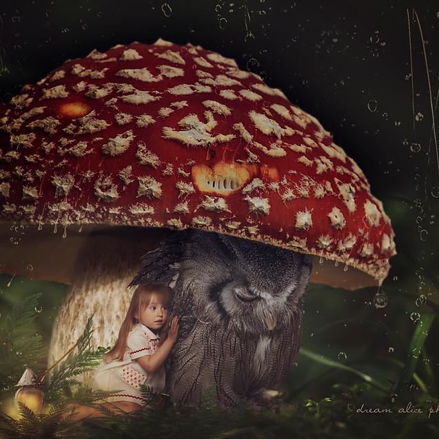 Raining day. Creative Children's Photography fantasy photoshoot, Dream Alice Photography & Art, Gold Coast