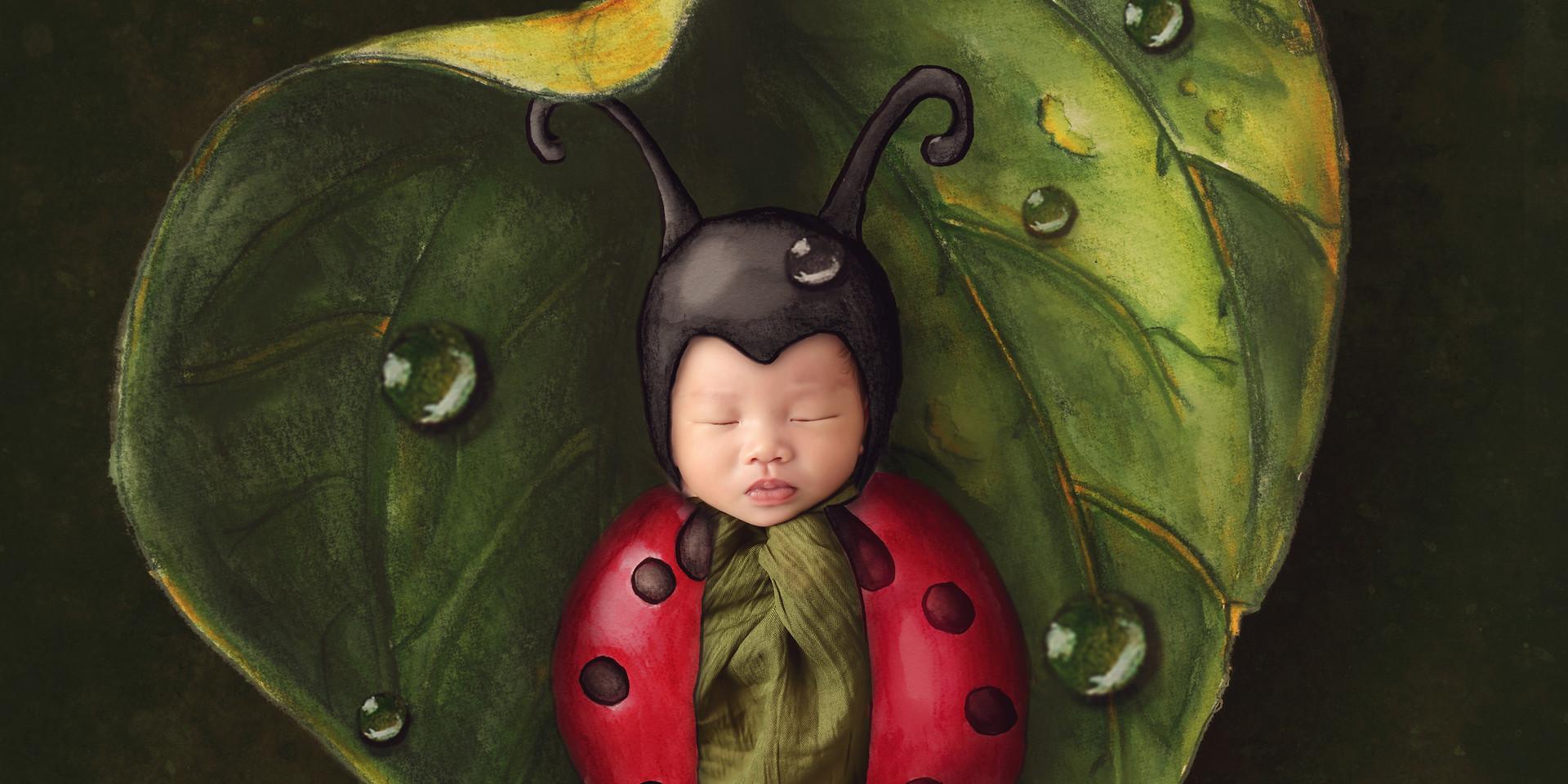 Lady bug baby WM.jpg