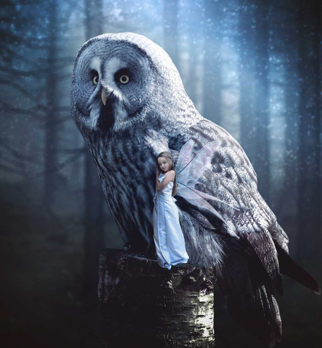 Night Owl Edit.jpg