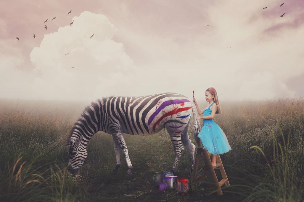 Zebra No WM.jpg