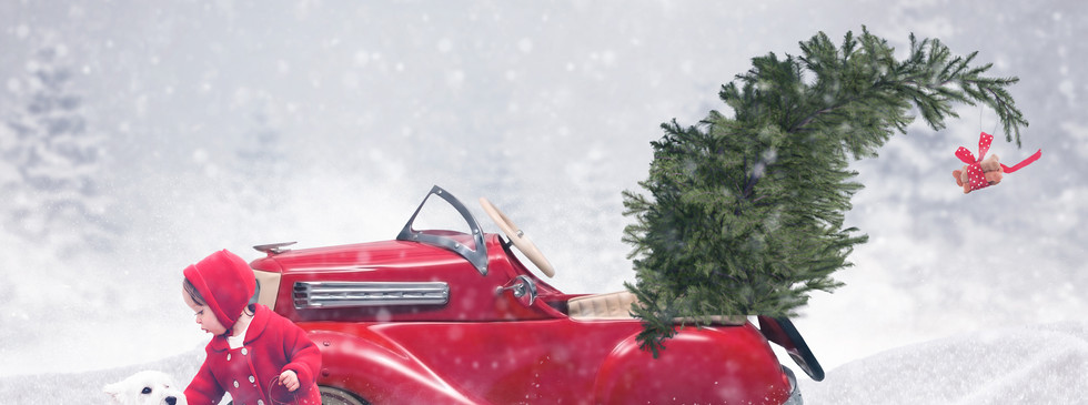 Christmas Car WEBsite.jpg