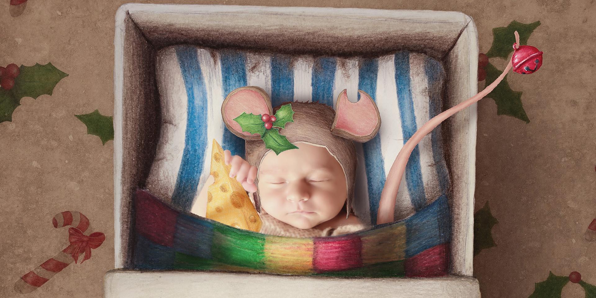 Mouse matchbox WM Sml.jpg