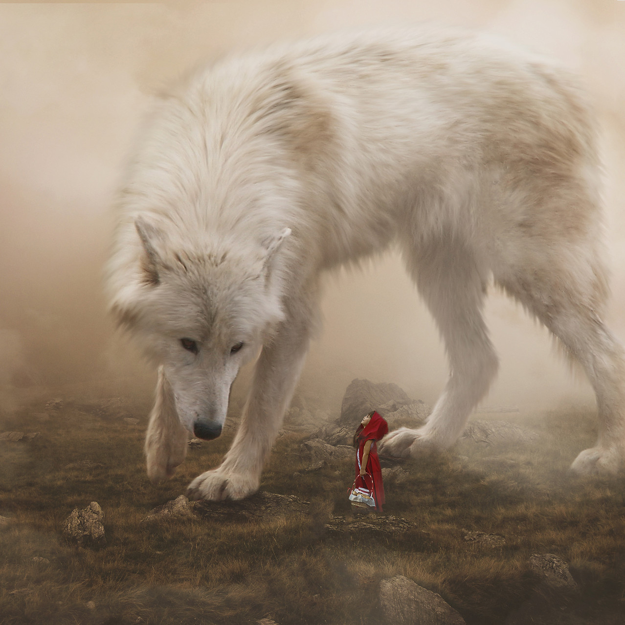 Red R Hood. Creative Children's Photography fantasy photoshoot, Dream Alice Photography & Art, Gold Coast