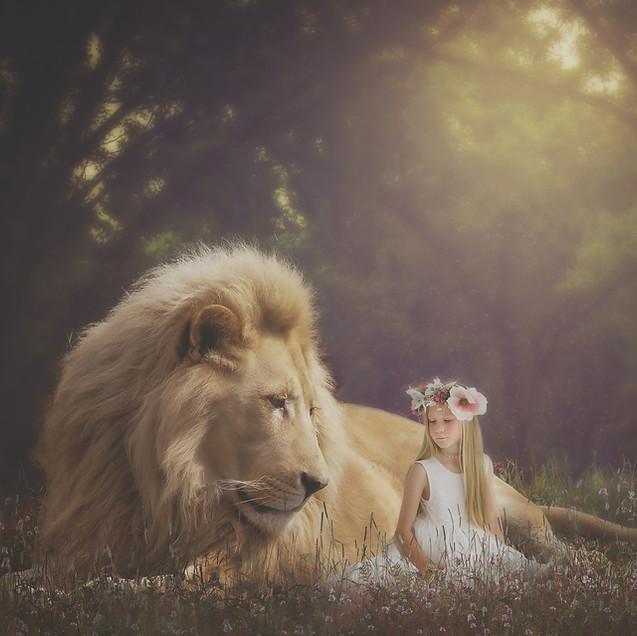 Creative Children's Photography fantasy photoshoot, Dream Alice Photography & Art, Gold Coast