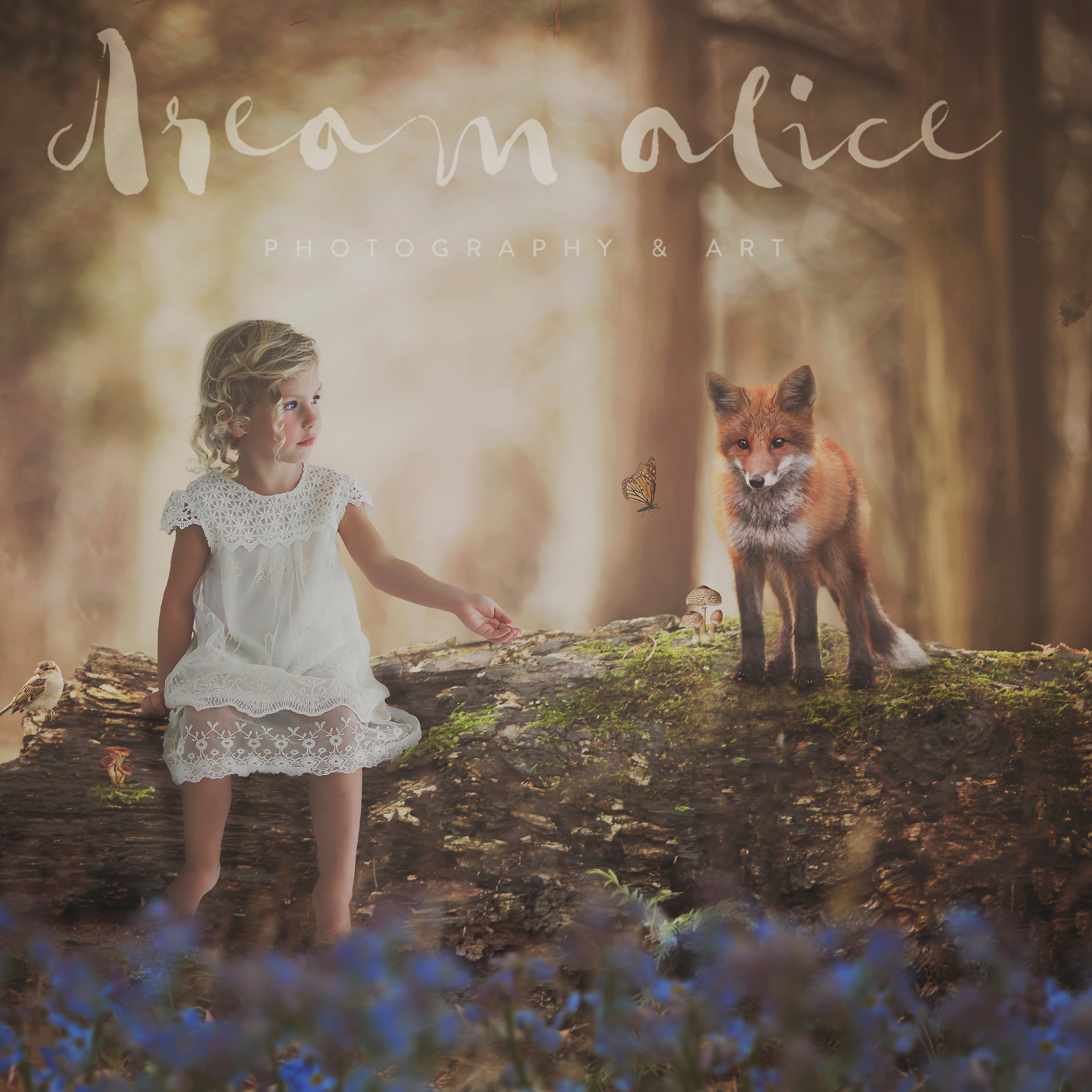 Forest Friends. Creative Children's Photography fantasy photoshoot, Dream Alice Photography & Art, Gold Coast