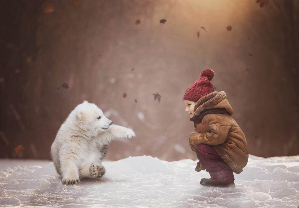 polar Play NO WM.jpg