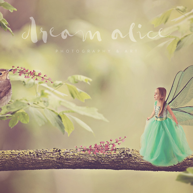 Bring me Flowers. Creative Children's Photography fantasy photoshoot, Dream Alice Photography & Art, Gold Coast