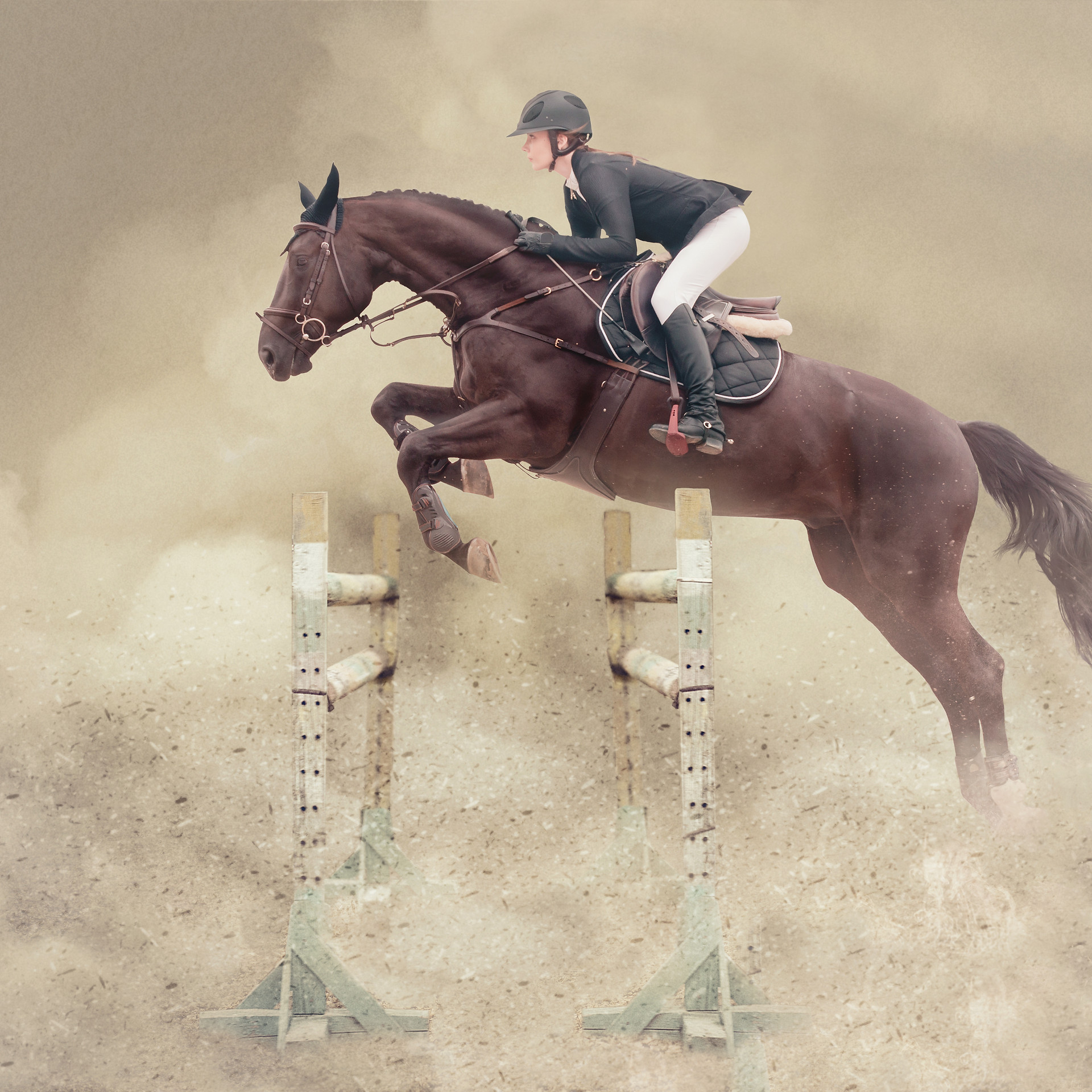 horse jump colour.jpg