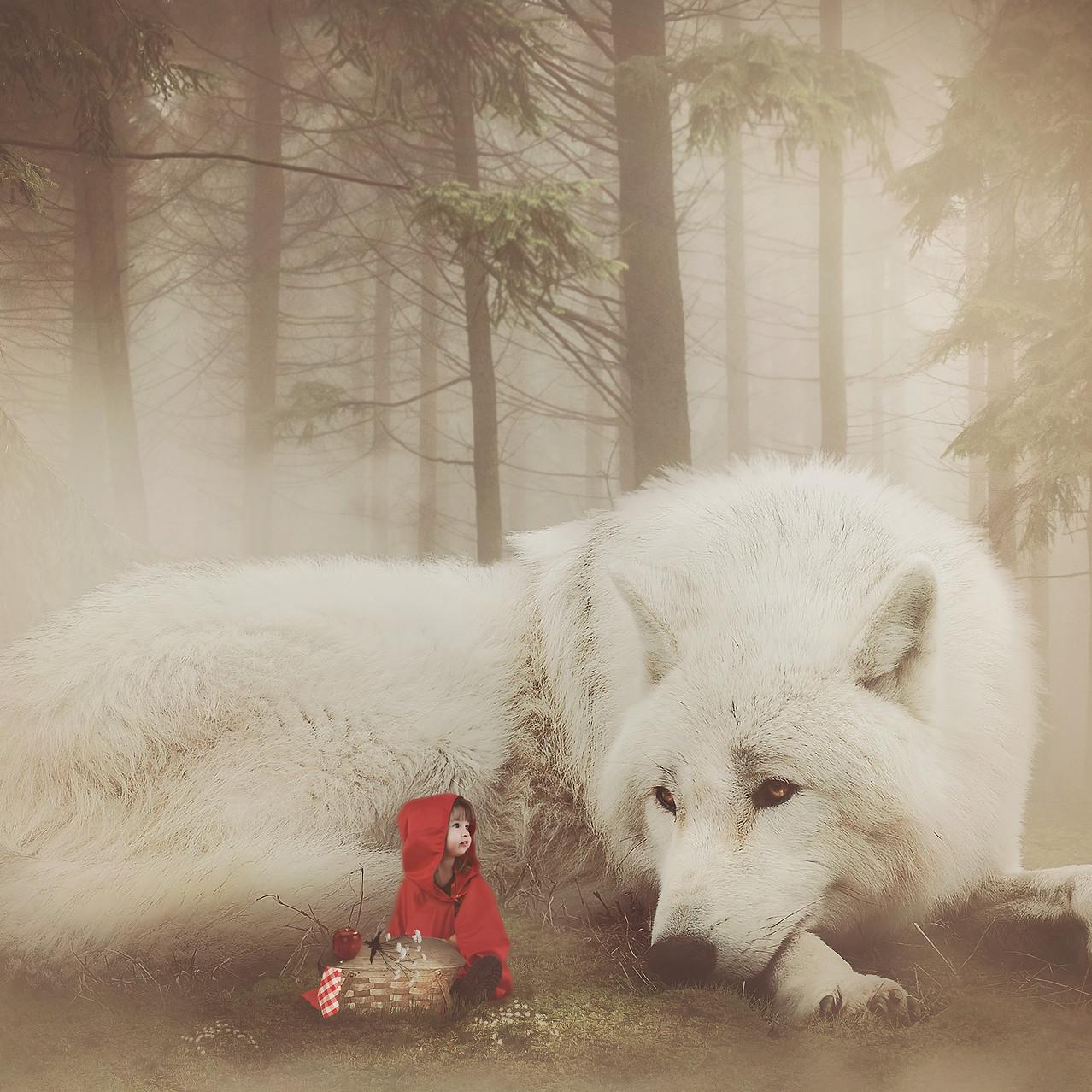Red Riding hood. Creative Children's Photography fantasy photoshoot, Dream Alice Photography & Art, Gold Coast