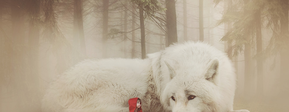 Red Riding hood. Creative Children's Photography fantasy photoshoot, Dream Alice Photography & Art, Gold Coast