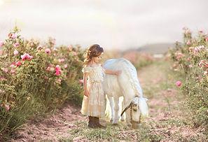 Pony Photo Shoot