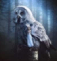 Dream Alice dream big Night Owl