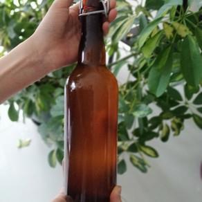 Le Kombucha, préparation d'une boisson pro-biotique