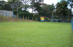 campo4
