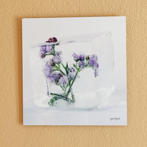 Ice flower VI