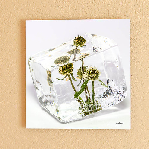 Ice cube with Small Green Flowers
