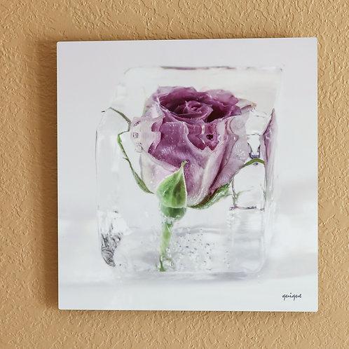 Ice cube Rose I