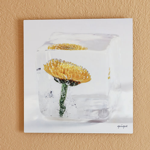 Ice flower VIII
