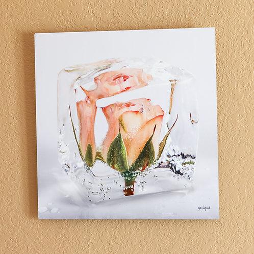 Ice cube Rose III