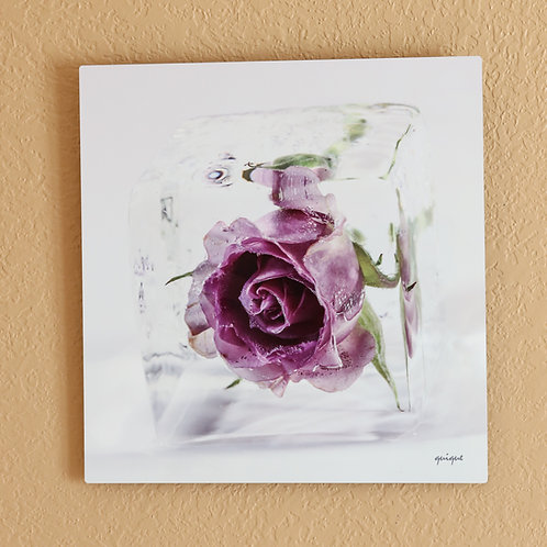 Ice cube Rose II