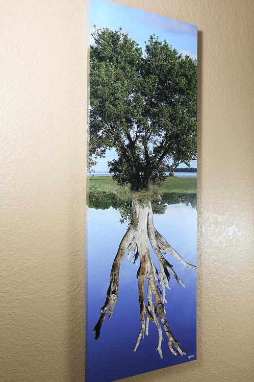 "Double tree - Colors - Canvas 48x16"""