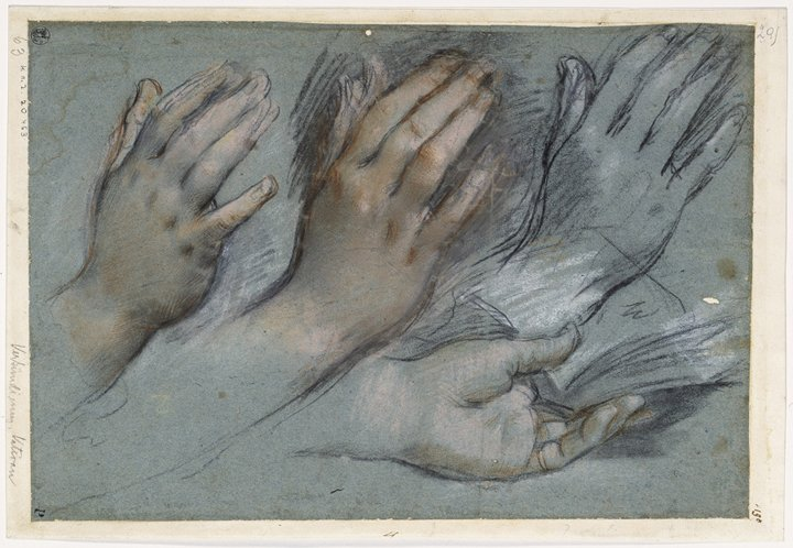 Rubens hands drawing.jpg