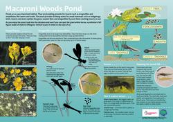 Pond panel