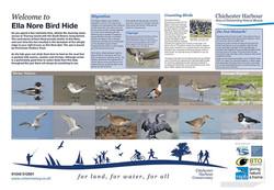 Bird Interpretation Panel