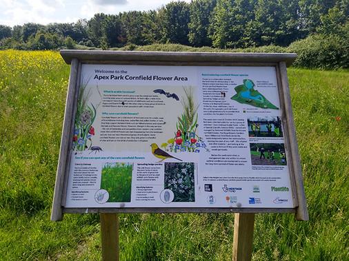 Countryside oak frame