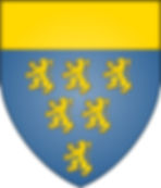 Upper exchequer treasury shield