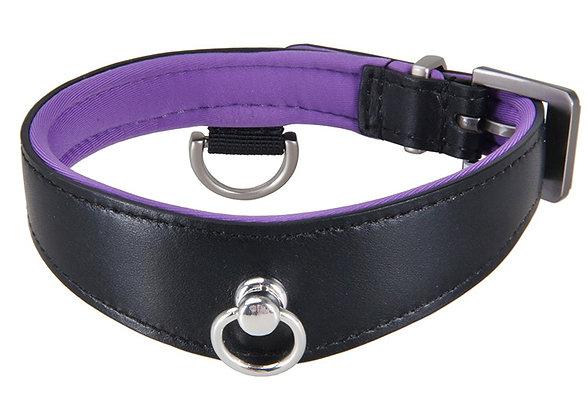 Black Swan - Collar Black Purple
